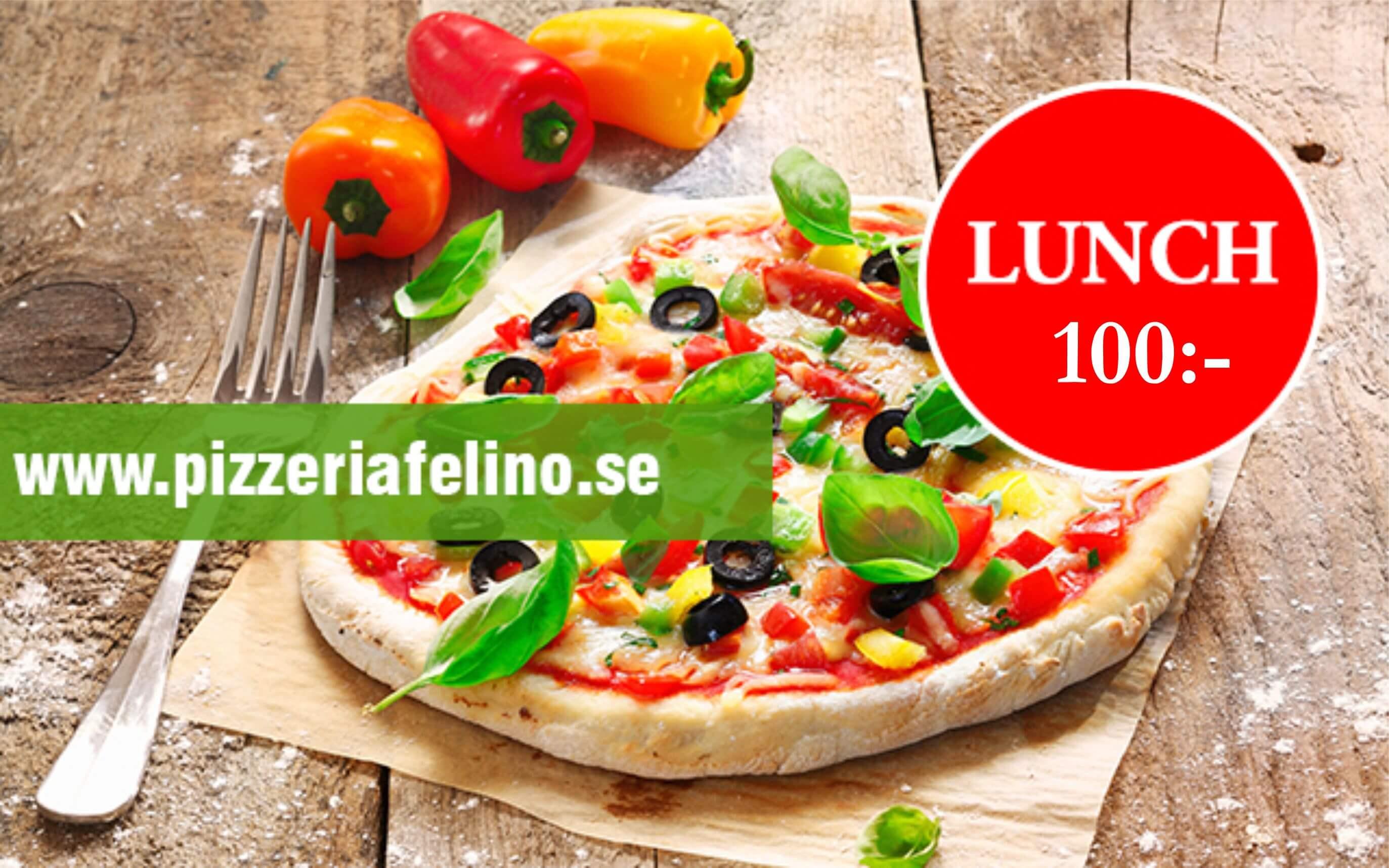 lunch-100 felino